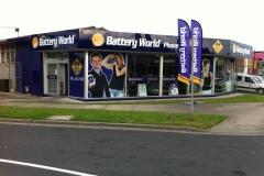 Battery_world